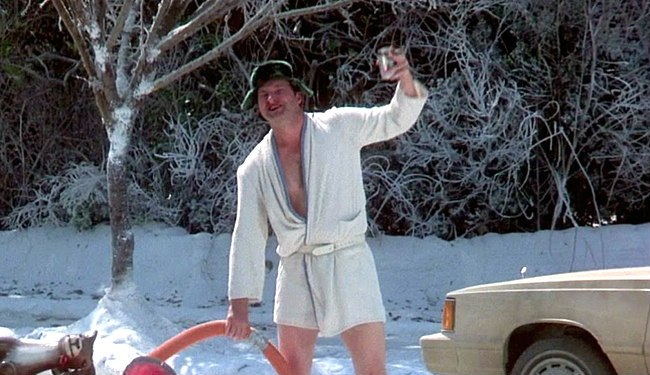 cousin-eddie-vacation