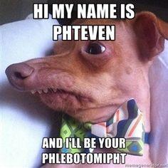 1ddd3c6988385d537dc516e46d231bce--dog-memes-funny-memes