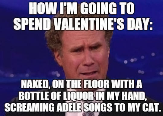 How-I-Am-Going-To-Spend-Valentines-Day-Funny-Will-Ferrell-Meme-Picture