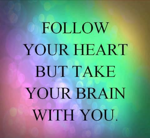 follow-your-heart-but-take-your-brain-with-you-quote-2