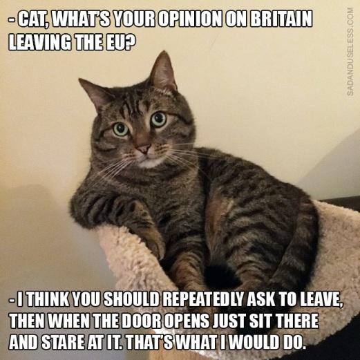 brexit-memes1
