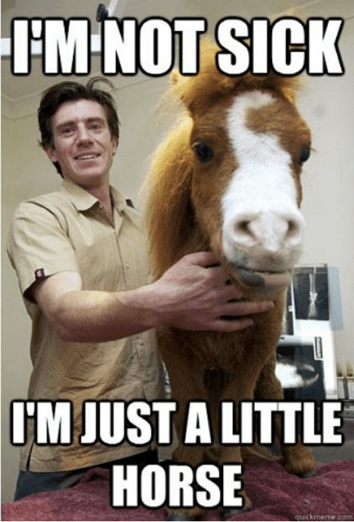 im-not-sick-m-just-a-little-horse-20-hilarious-51735318