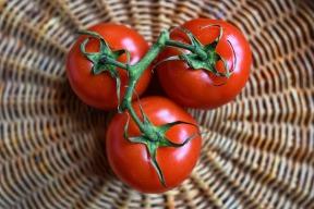 tomato-3520004_1280