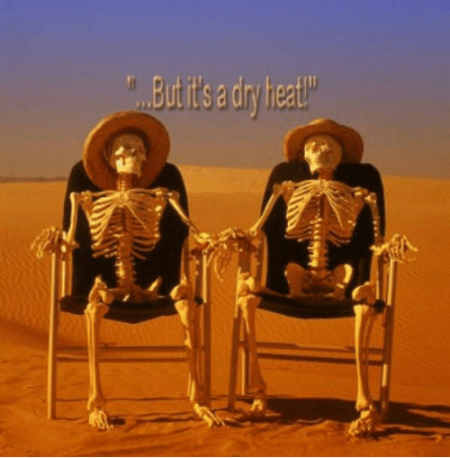 burtitsa-dr-heat-20-about-hot-weather-humor-pictures-and-53874882